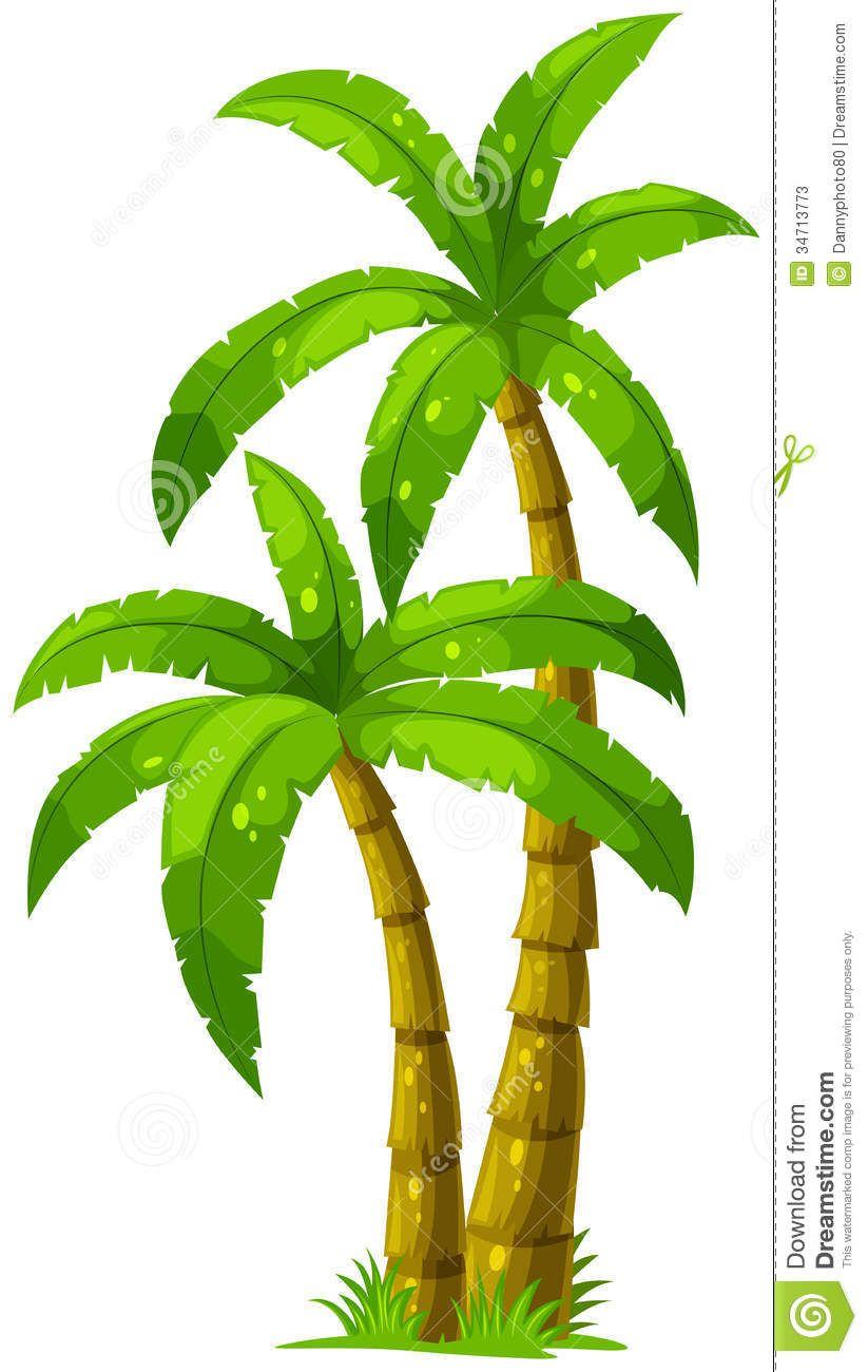 Two Palm Trees Stock Photos - Image: 34713773 | landscaping ...