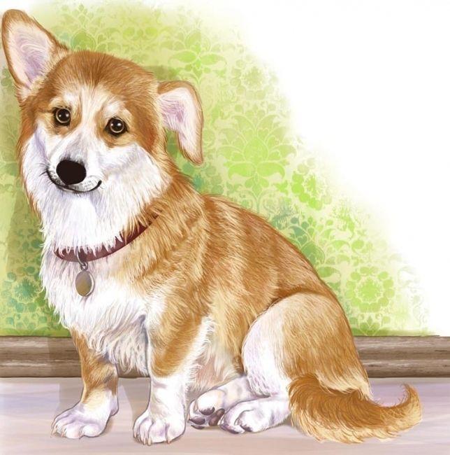 Картинки собаки и щенка детские