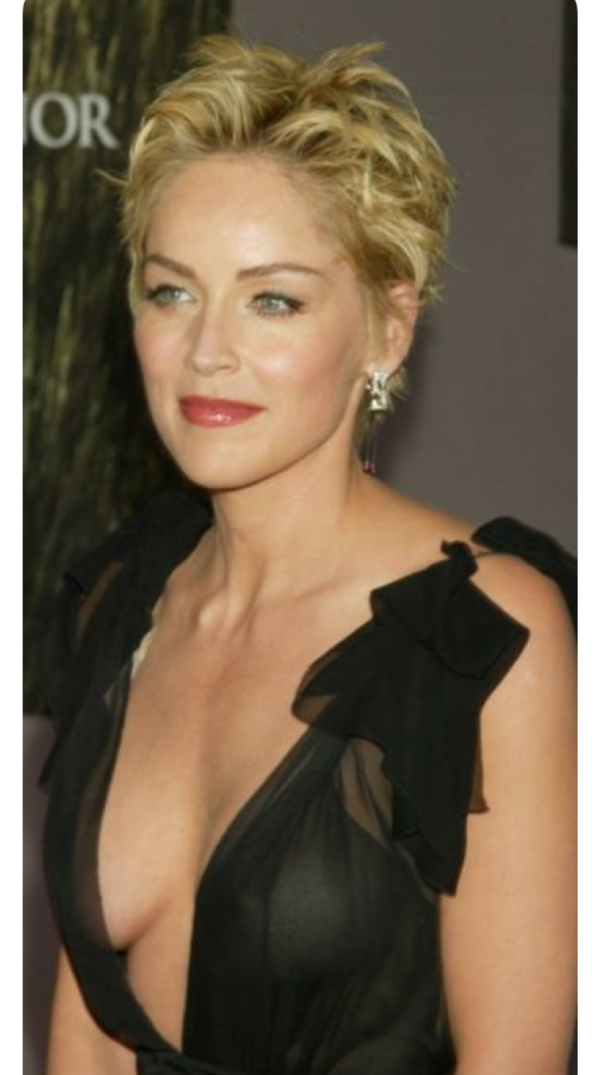 Sharon Stone Oggi Cerca Con Google Capelli Pi Corti Tagli Di