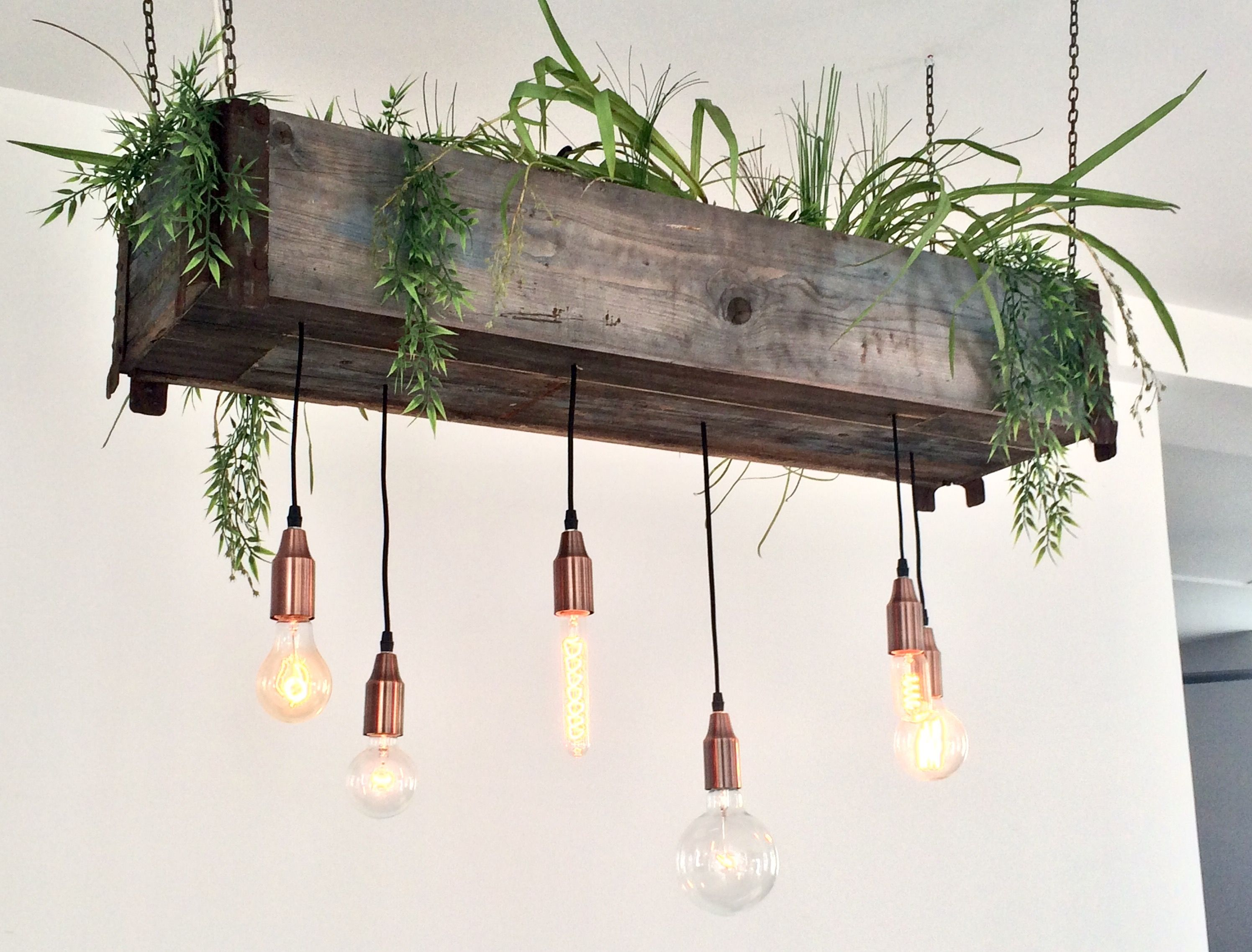 Lamp Plant Pendant Copper Chains Lamp Hanging Plant Up Cycled Diy Cafe