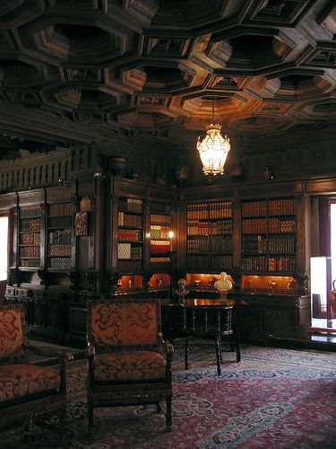 Gnarly Libraries Gothic Interior Gothic House