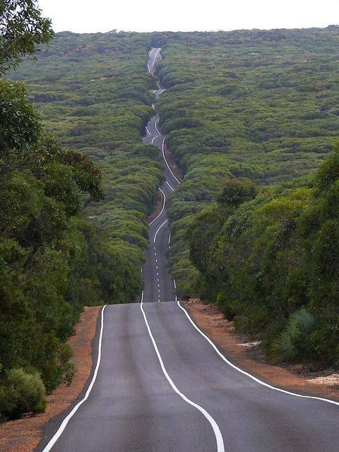 Kangaroo Island road in Flinders Chase National Park, Australia