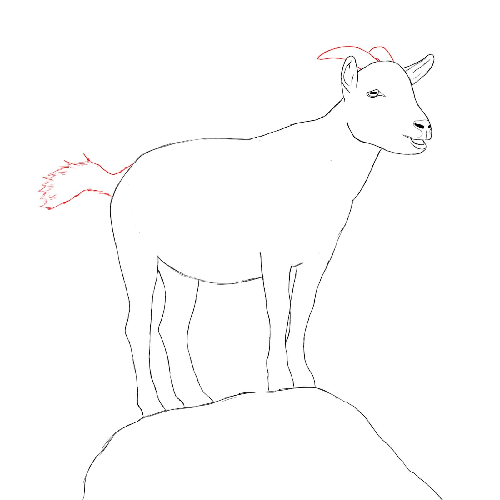 goats today we will be learning how to draw a