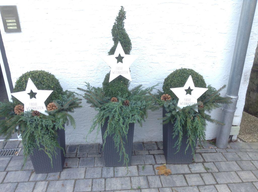 Buchs mit Tanne und Tannenzapfen weihnachtlich dekoriert. Von Ulrike Kruppe