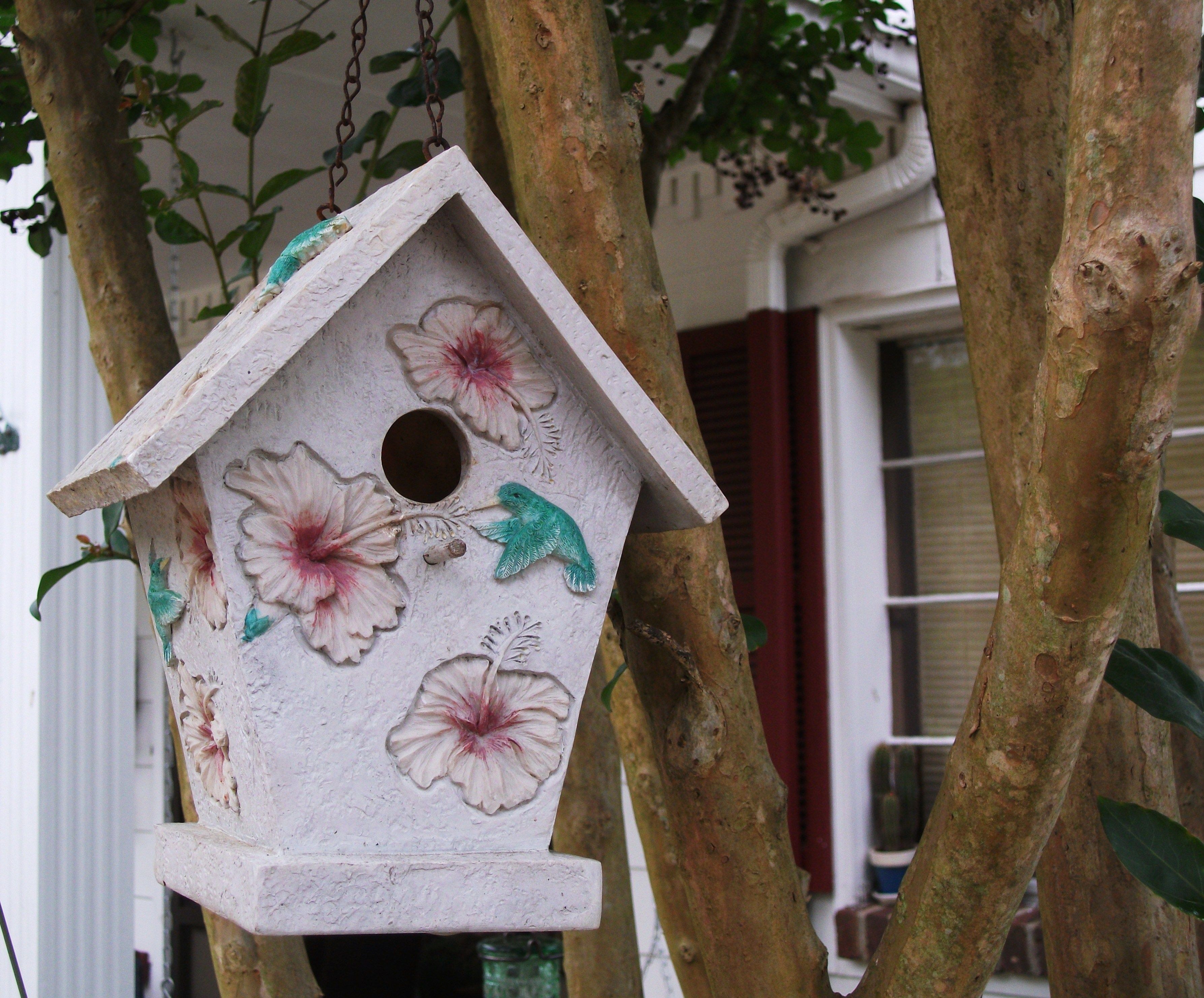 The birds have been busy builing their nests this year..I love to watch them..We had babies last spring   <3  (In loving memory of my friend Christina in Heaven)