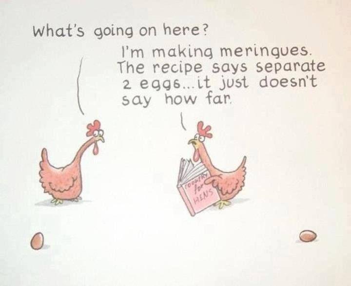 Chicken Pet Quote: Meringue Humor