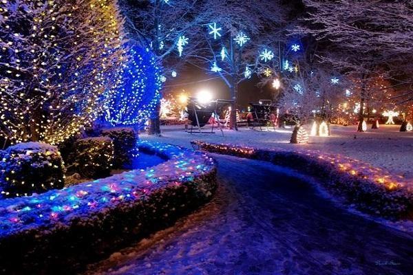 La Salette Christmas Lights On The Park Decorating With Christmas Lights Christmas Lights Festival Lights