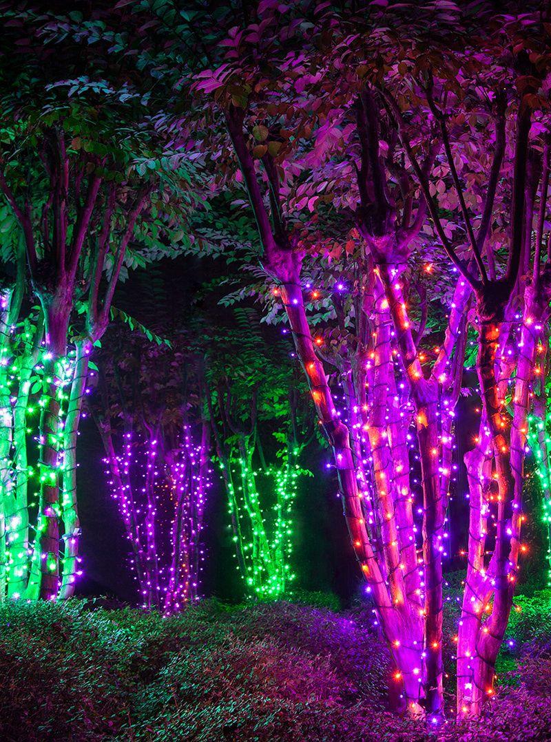 Halloween Lights & Decoration Ideas Halloween light