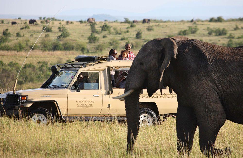 Safari at Sarova Mara Game Camp in Kenya
