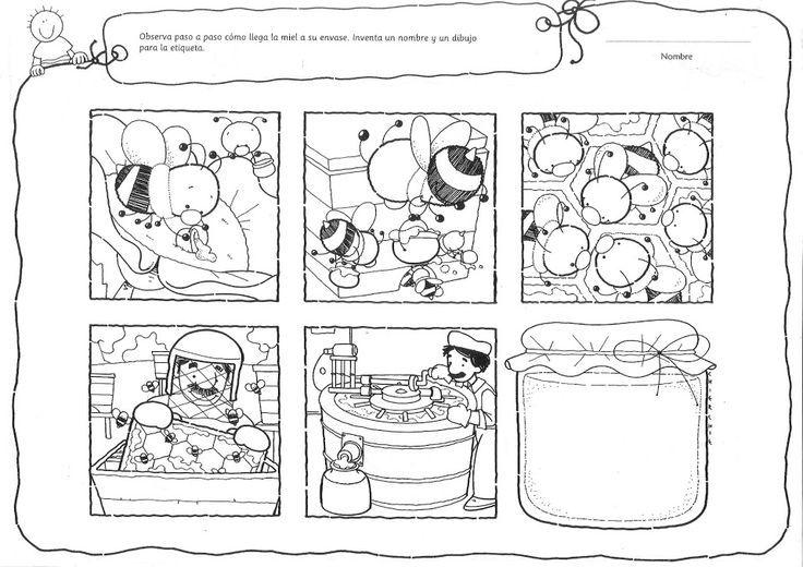 Ciclo como se produce la miel | abejas | Pinterest