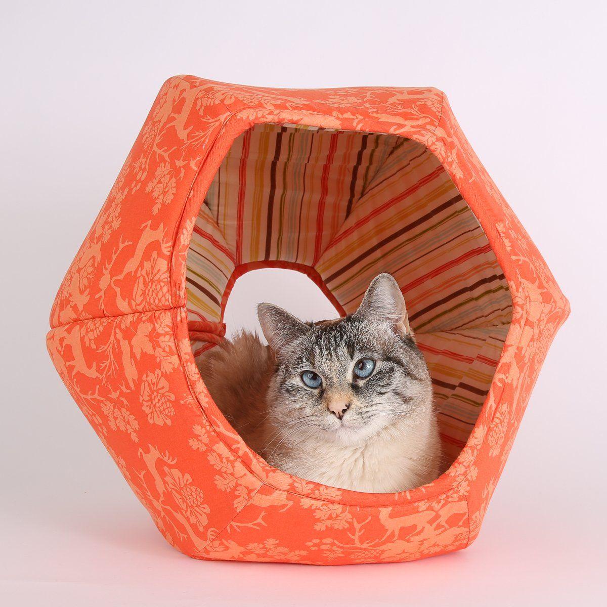 Park Art My WordPress Blog_Wall Mounted Cat Bed Australia