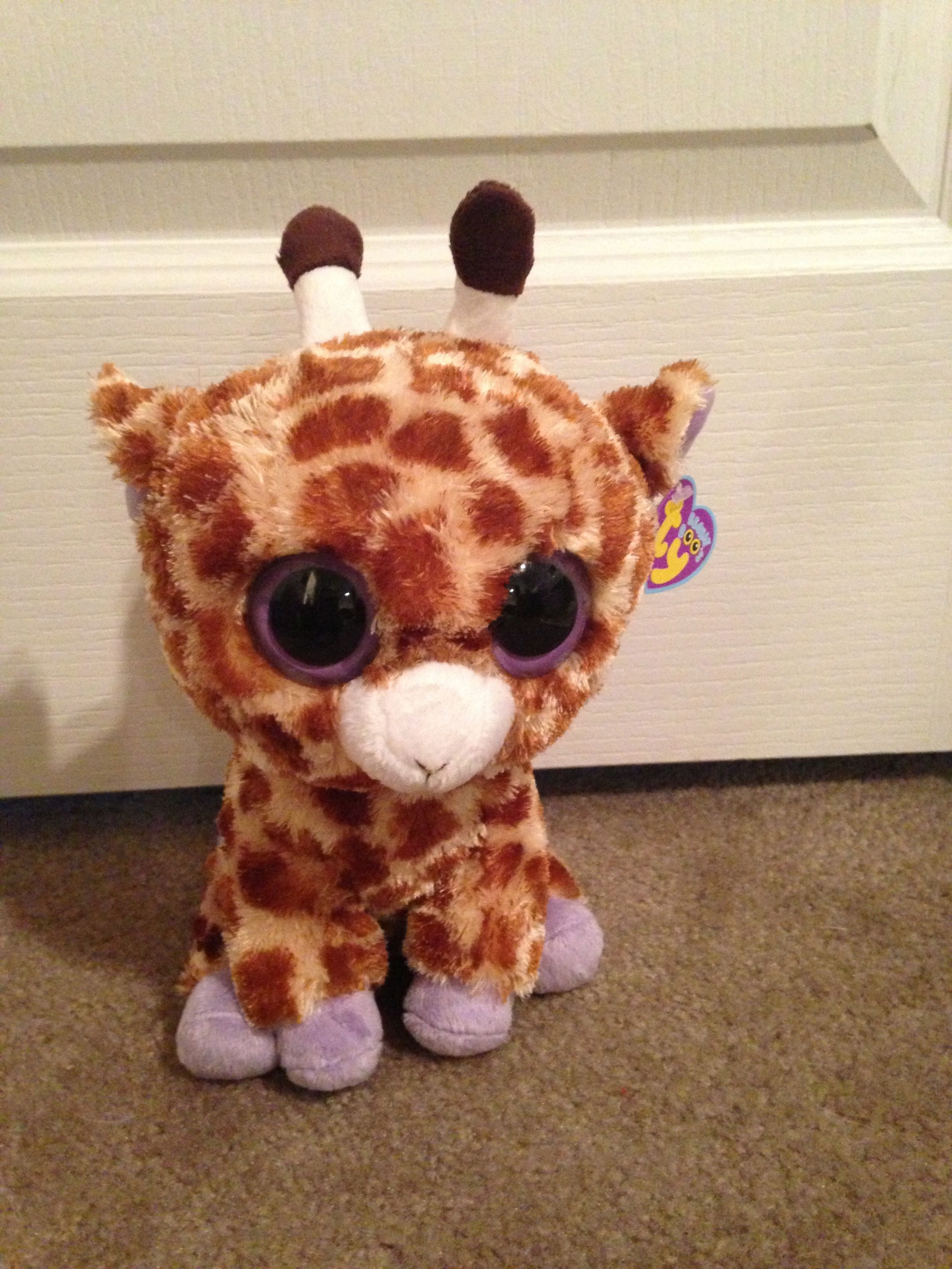 Giraffes have the biggest hearts and stand above all the