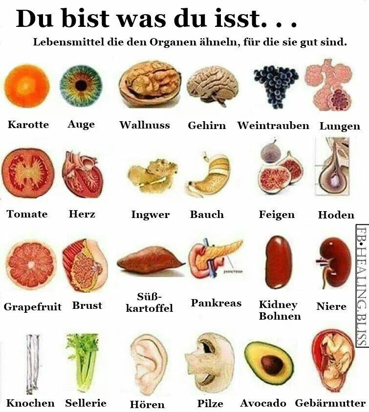 Lebensmittel für eine gute Ernährung
