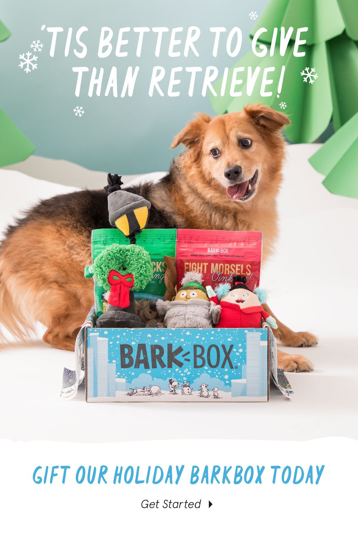 BarkBox is a monthly themed box of toys, treats, and crazy