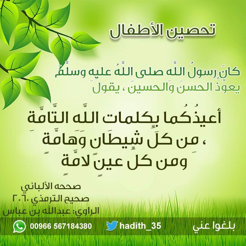 Pin By Nawar Bittar On دعاء Herbs Parsley