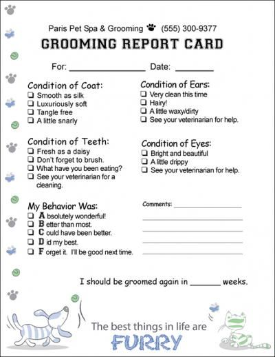Report1furrypaper 8 1 2 X 11 Report Card Mbs Communications Veterinary And Pet Care Dog Grooming Salons Dog Grooming Shop Pet Grooming Business