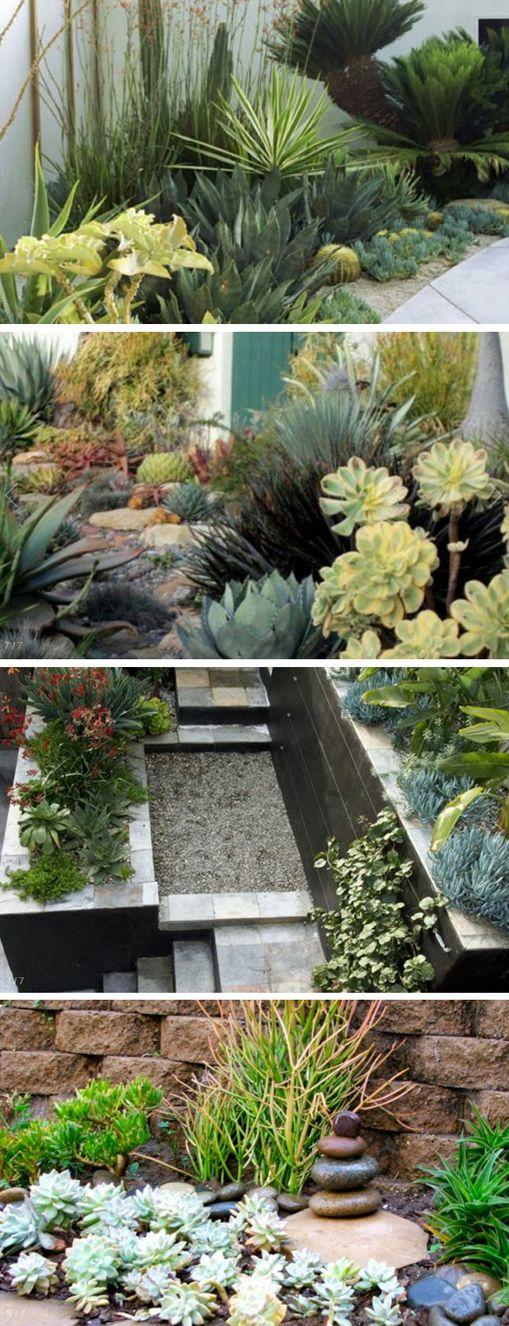 create waterless garden