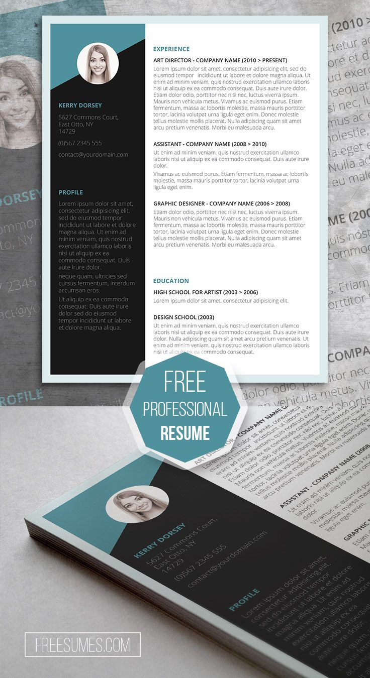 Free Job Winning Resume Template Professional resume
