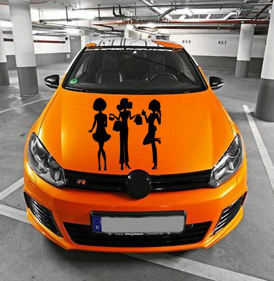 Vinyl Decal Sticker for Car Hood  fits any Auto by Harmony4Life