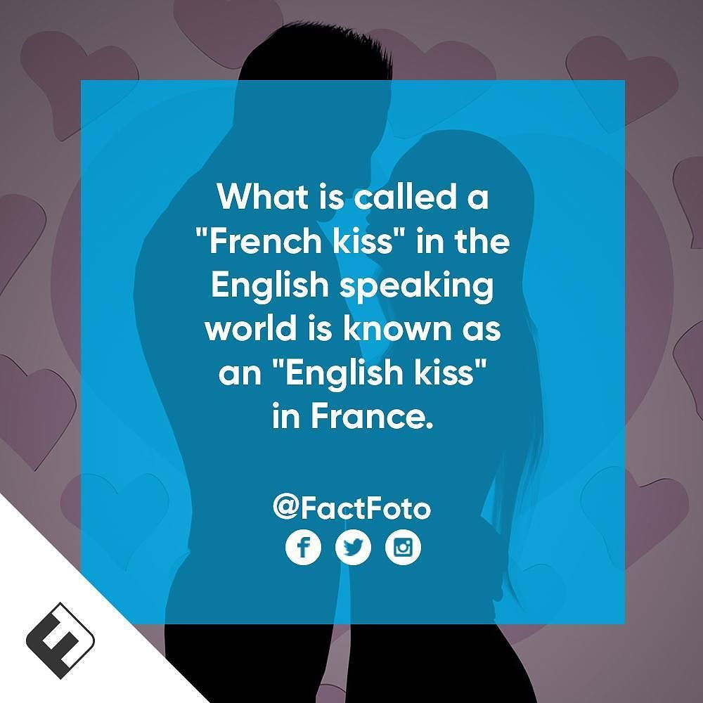 Factfoto Fact Facts Frenchkiss Things You Didnt No Wtf Fun