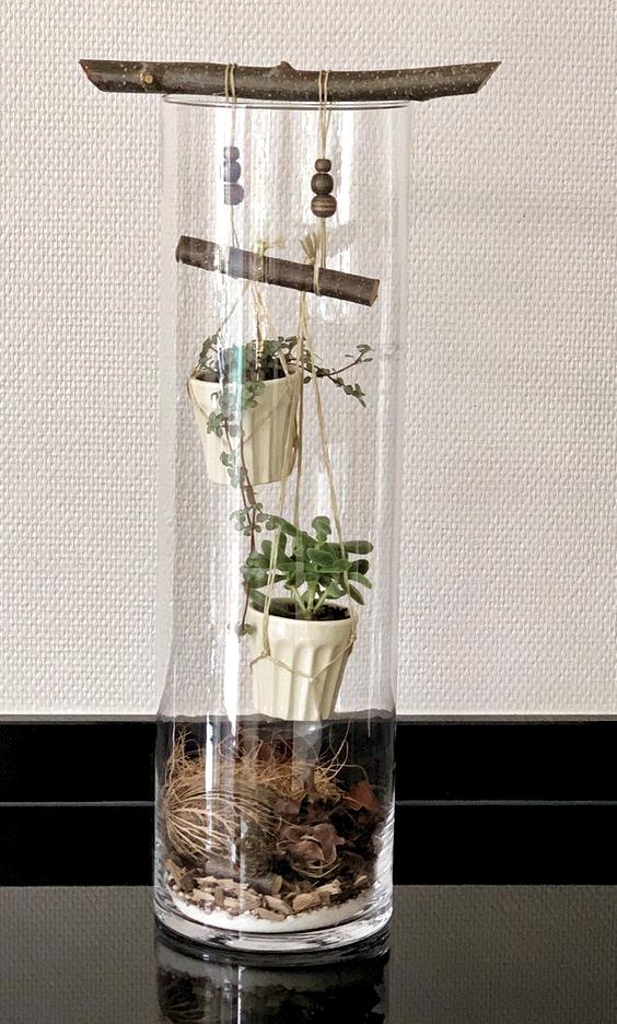 Pin By María Cristina On суккуленты In 2020 Plant Decor Glass Planter Mini Garden