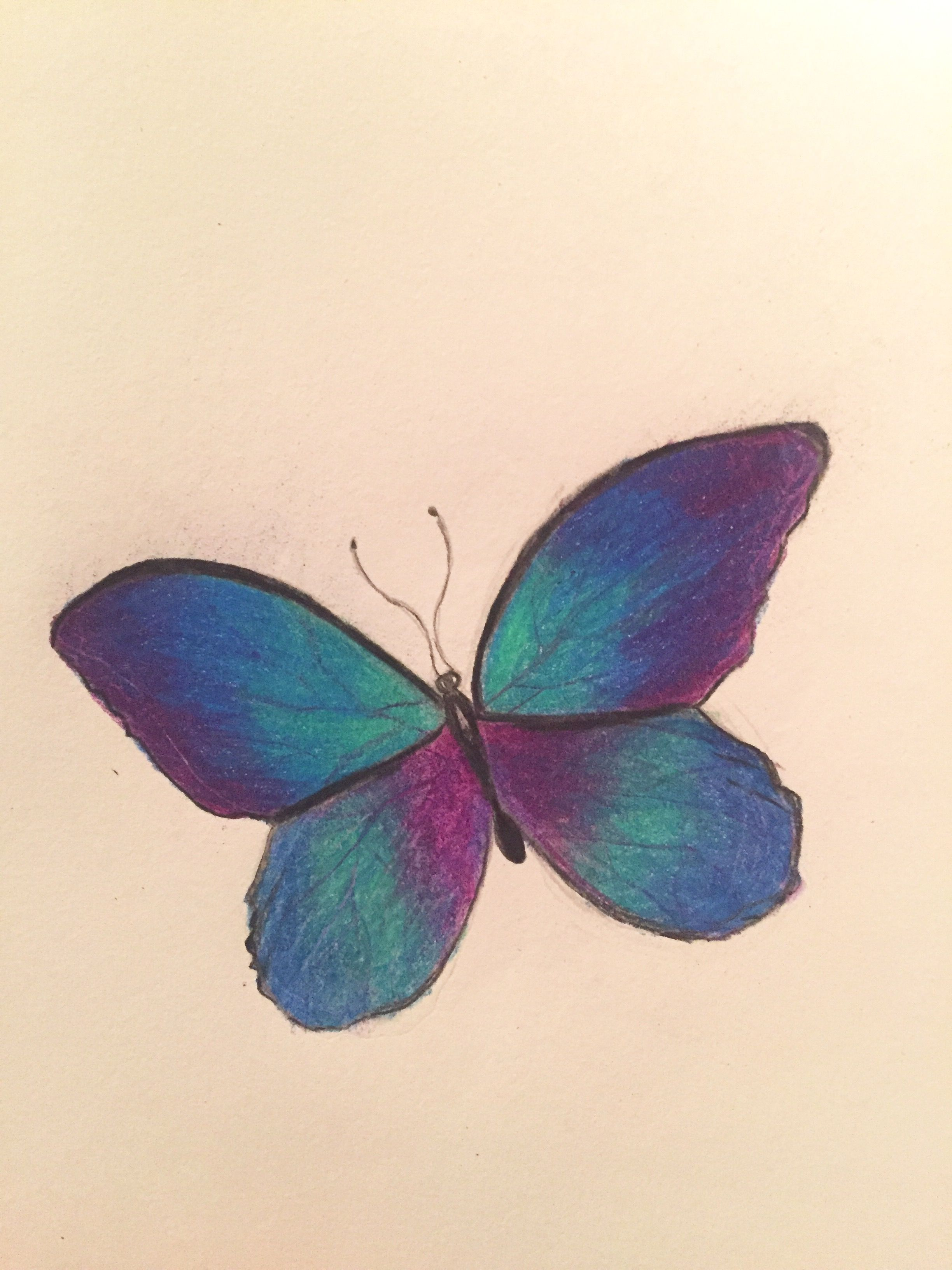 Colorful butterfly drawn with color pencil | Dibujos