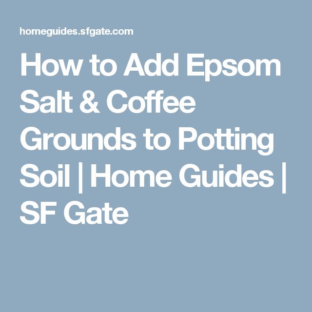 How To Add Epsom Salt Coffee Grounds To Potting Soil Potting Soil Coffee Grounds Epsom Salt