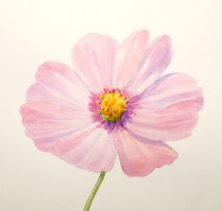 Paint Draw Paint Learn To Draw Water Color Basics A Cosmos