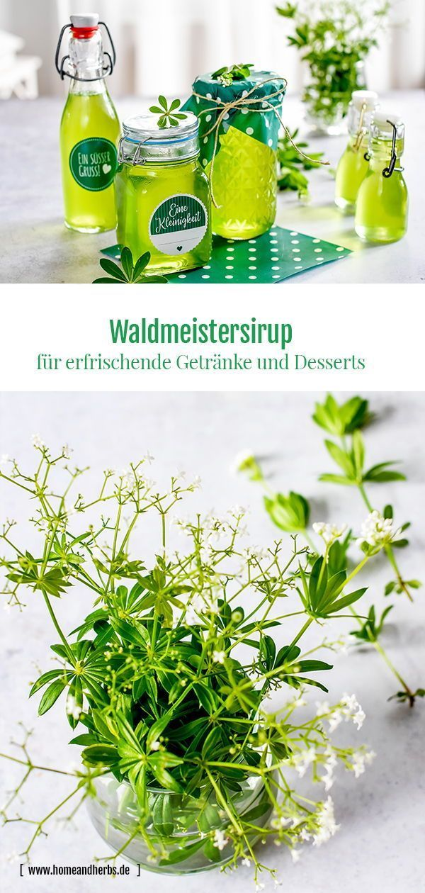 Waldmeistersirup - Home and Herbs