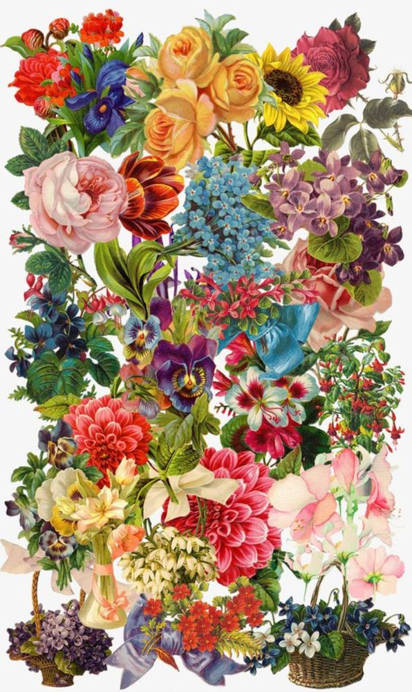 The Meeting of All the Flowers went Splendidly Art Print