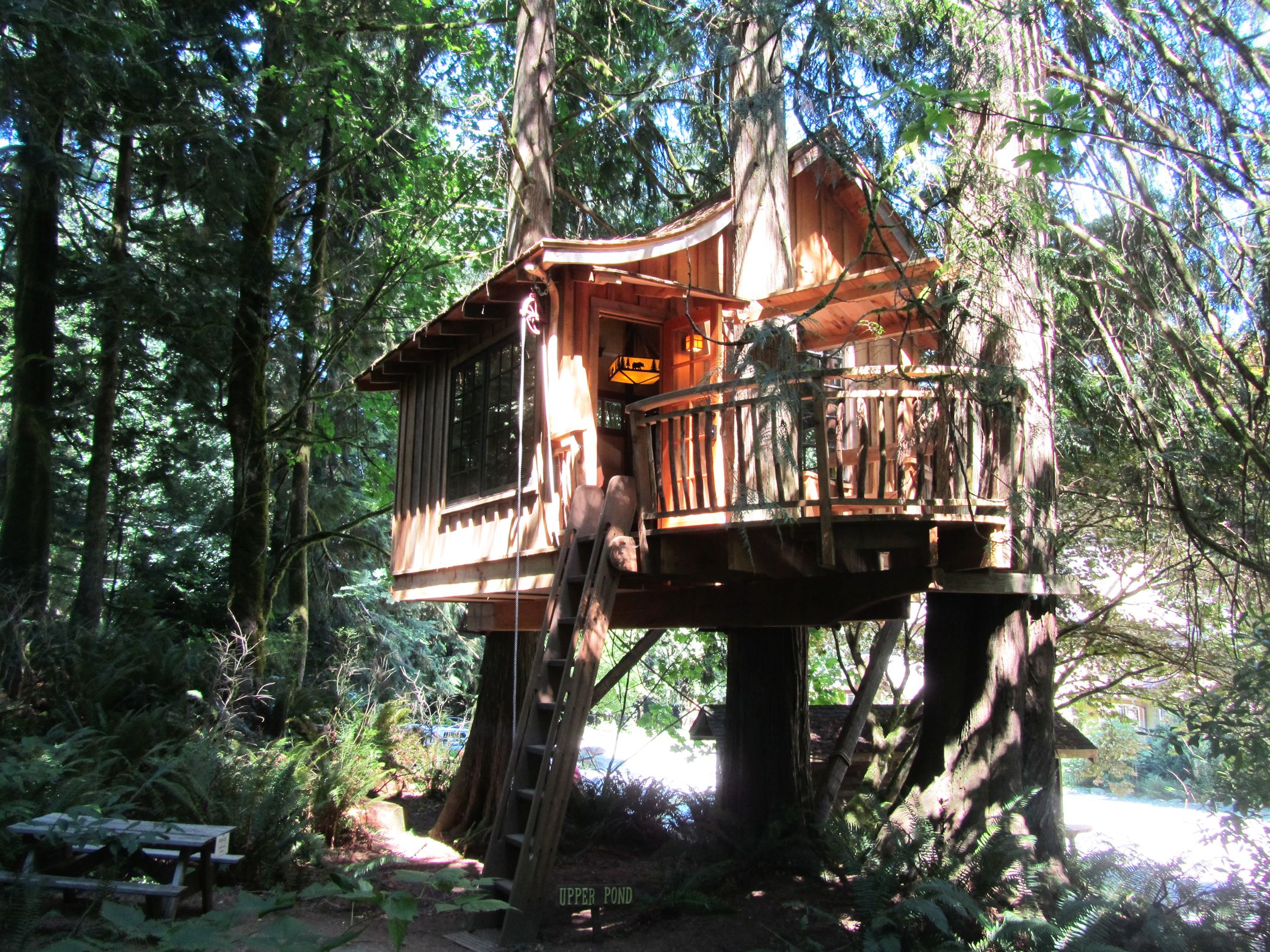 tree house decorating ideas. Cool Tree House Blueprints. Extraordinary Design Architecture With Unique Wooden Amazing And Astonishing Decorating Ideas