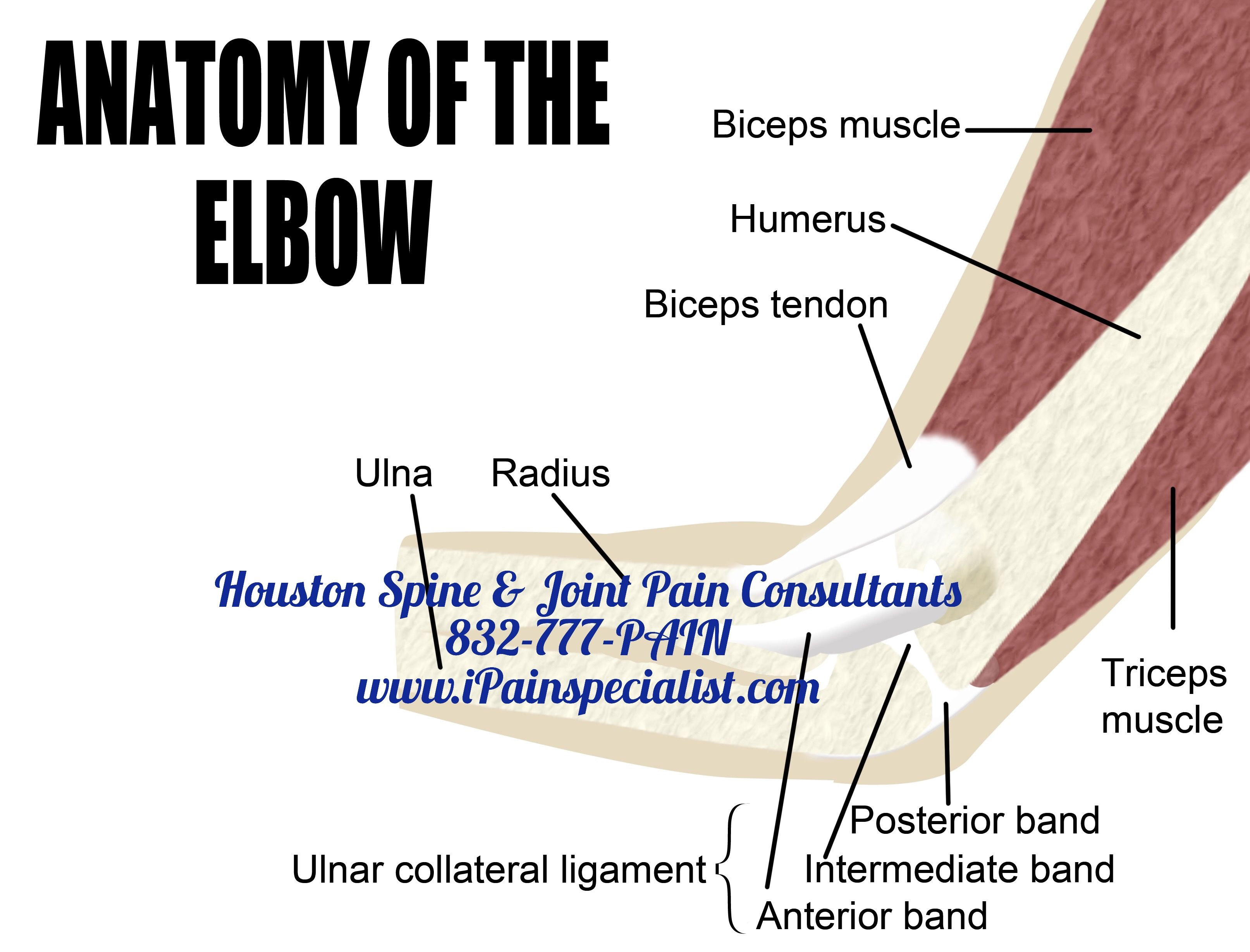 Pin by Houston Spine & Joint Pain Consultants on Elbow Pain ...