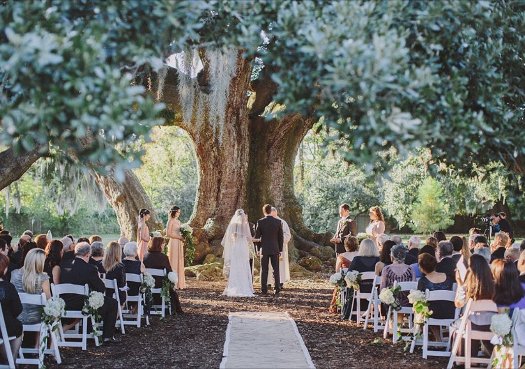 Audubon Park Tree Of Life Wedding Maile Lani Photography New Orleans Wedding Vintage Garden Wedding Wedding