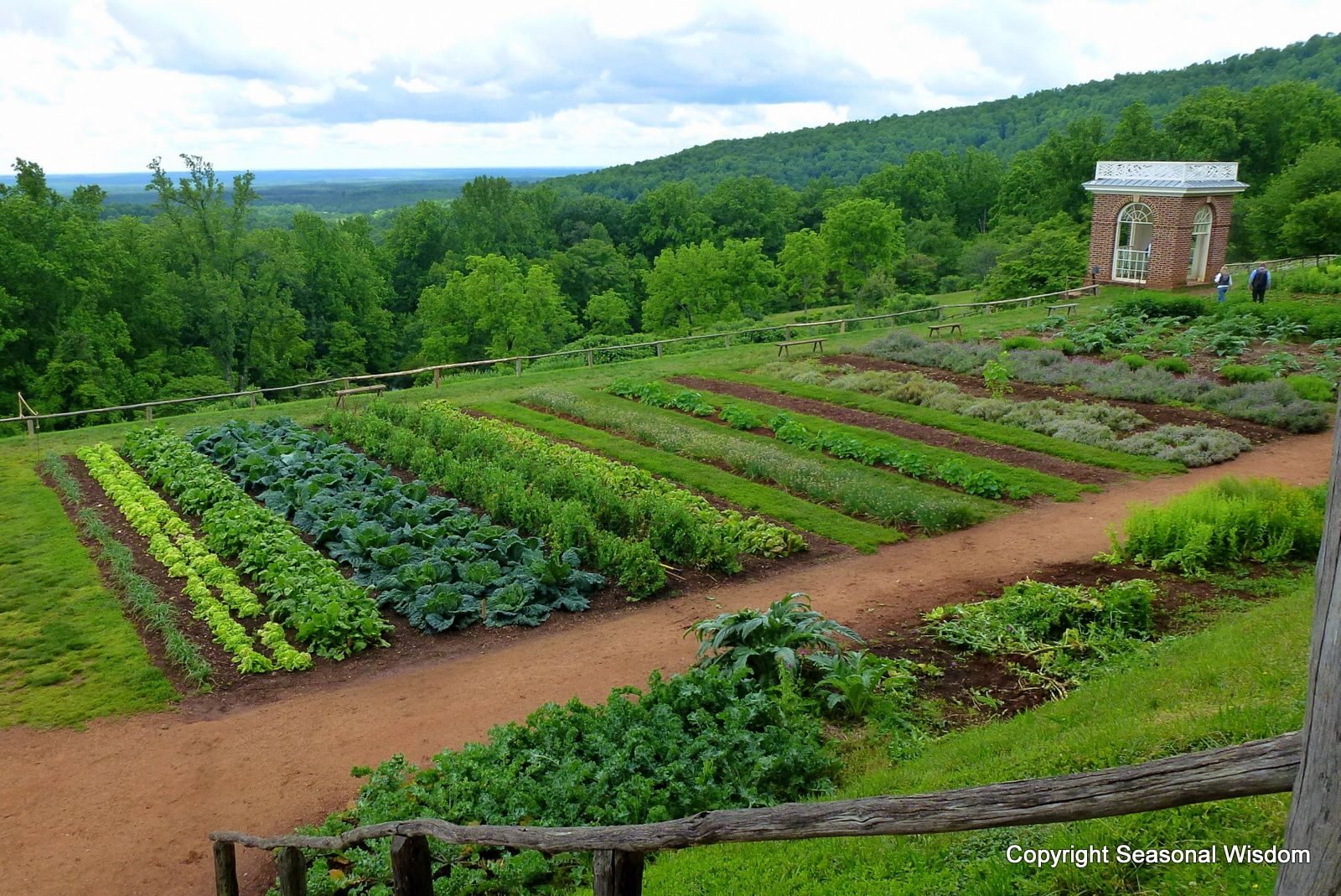 Learn How Thomas Jefferson Created His Renowned Garden Laboratory At  Monticello. Take A Tour From