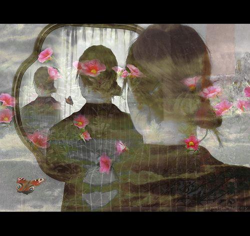 My Home  Between Time and Space Flowers appear   Dedicated to alicepopkorn   HKD  Dort, wo die Himmel sich begegnen  Fliege ich mit den Schmetterlingen   HKD   Happy Valentine to all my flickr-friends! HKD