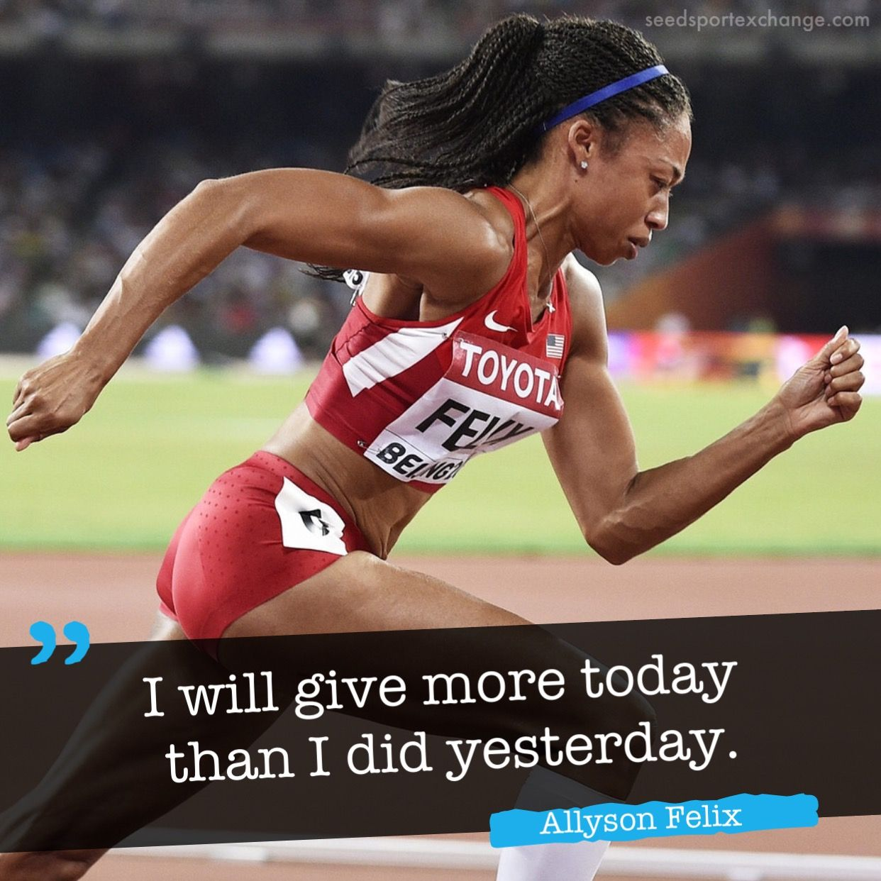 Pin by Seed Sport Exchange on Athletes Quotes Athlete