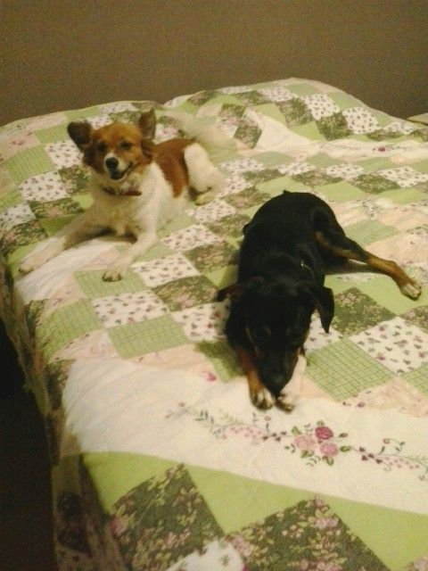 Susie Marie e Peta...♥♥