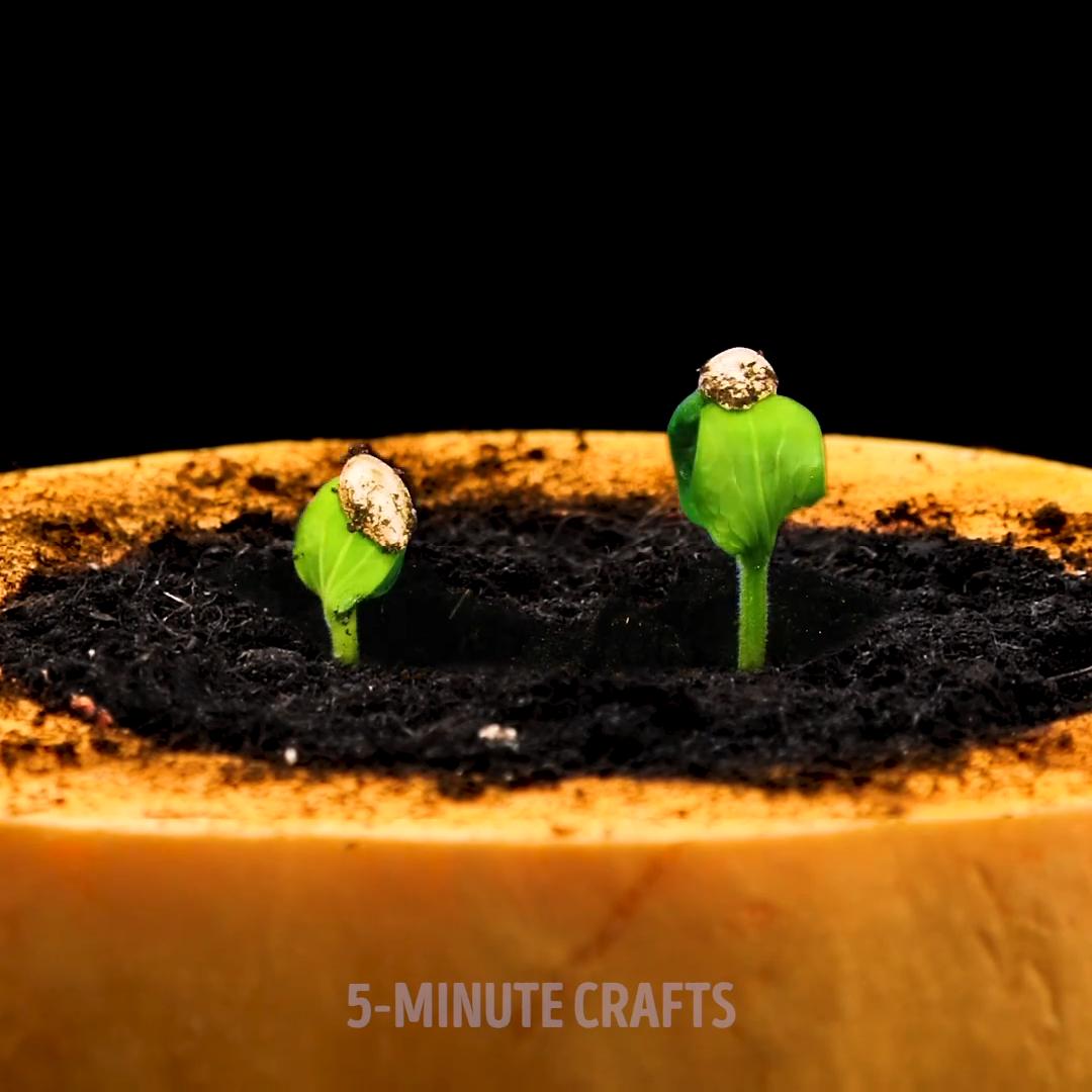 Photo of Leicht wachsende Pflanzenteile für Ihren inneren Gärtner 🧑🌾🌱