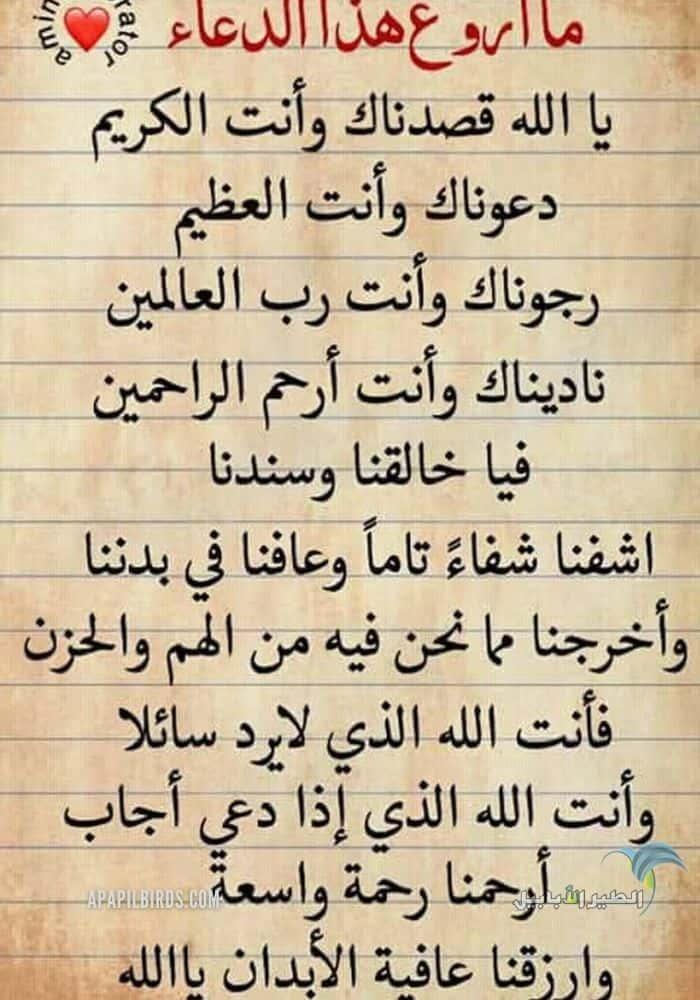 دعاء اللهم اشفي مرضانا ومرضى المسلمين مكتوب وبالصور تصاميم جديدة الطير الأبابيل Math Alor Math Equations