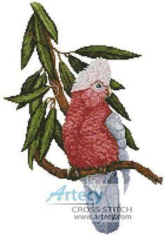 Galah Parrot Chart Counted Cross Stitch Pattern Needlework Xstitch