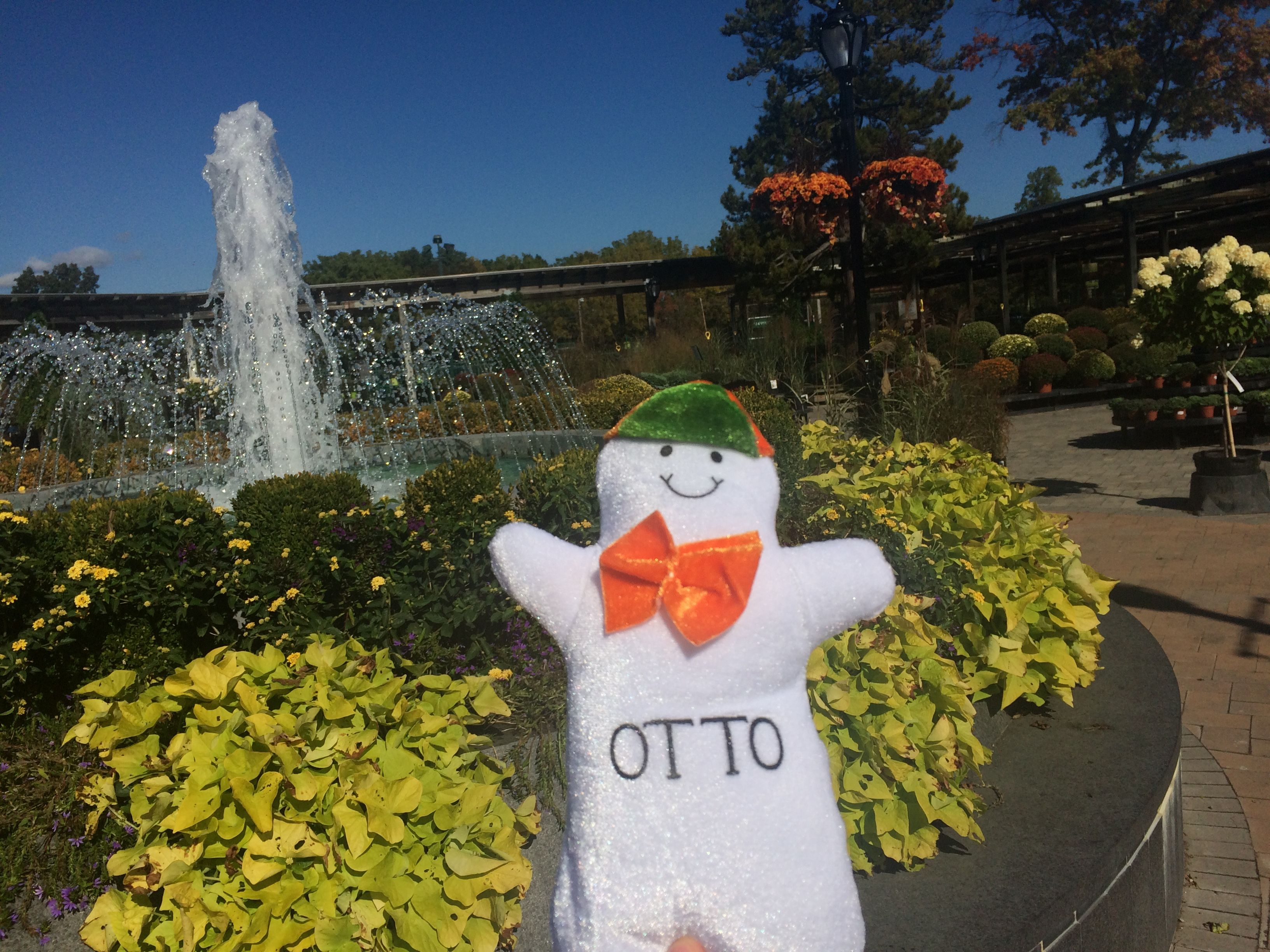 Otto Babyzimmer ~ Otto in the nursery at hicks nurseries the adventures of otto the