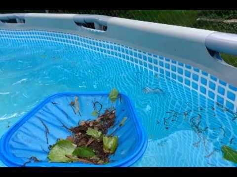 "Intex Pool 18' by 52"" WEEKLY MAINTENANCE (MUST WATCH!)  - YouTube"