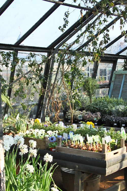 Petersham Nurseries In Richmond Upon Thames London Just Beautiful Good Food Too A Feast For The Eyes Stomach