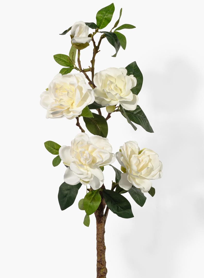 27in Gardenia Spray In 2020 Flowers For Sale All Flowers Flowers