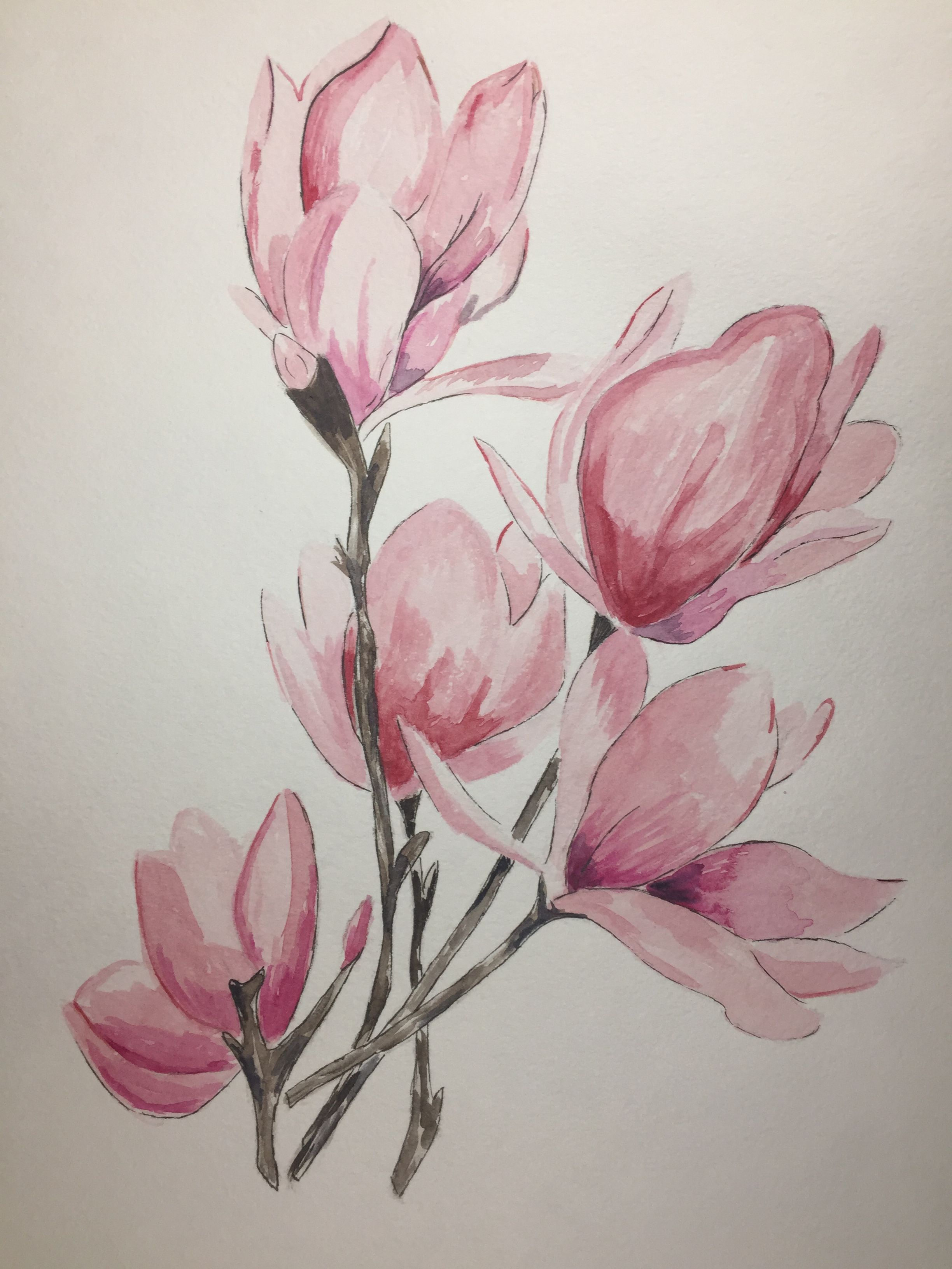 Magnolia By Eva Moskovskaya Watercolor 卡片 Painting Art