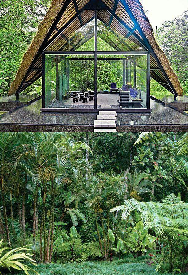 Bali | Native fox, Secret hideaway and Small spaces