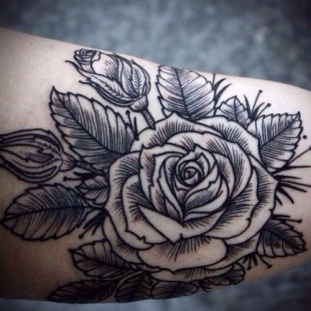 Pin by Morgan Vandehei on Tat it up | Tattoos, Hawk tattoo ...
