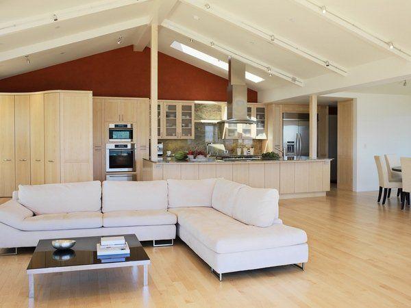 Vaulted Ceiling Lighting Ideas Skylight Contemporary Living Room