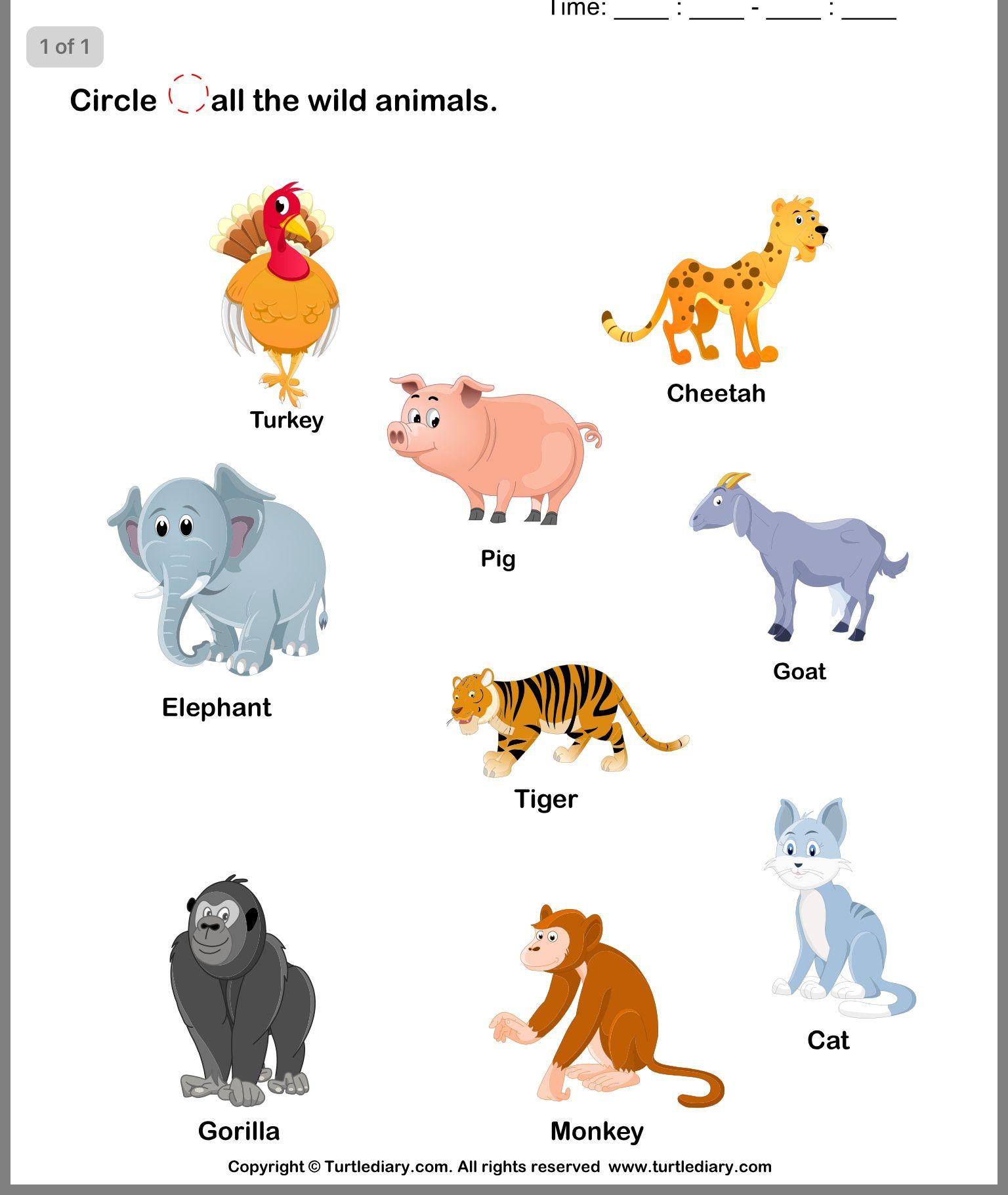 Pin By Abir Retiwala On Animal Worksheets