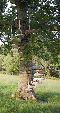 The Craziest Treehouse Stairs Are On Our Blog!